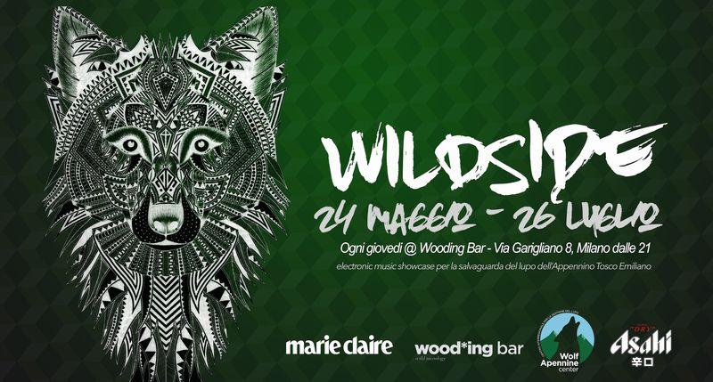 locandina del Festival di musica elettronica Wild Side
