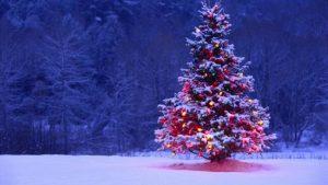Come vestirsi a Natale, e come comportarsi: 10 regole di Viviana Volpicella